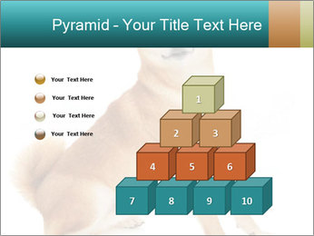 0000081726 PowerPoint Templates - Slide 31