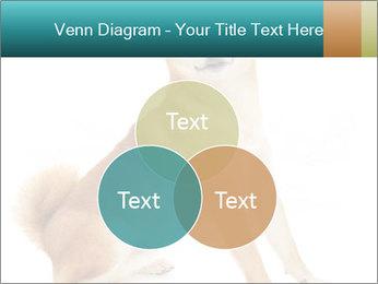 0000081726 PowerPoint Templates - Slide 33