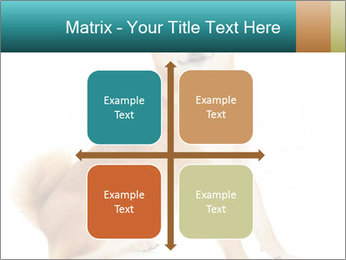 0000081726 PowerPoint Templates - Slide 37