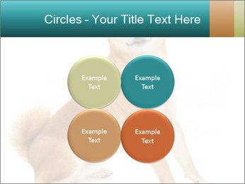 0000081726 PowerPoint Templates - Slide 38