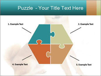 0000081726 PowerPoint Templates - Slide 40