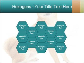0000081726 PowerPoint Templates - Slide 44