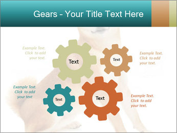 0000081726 PowerPoint Templates - Slide 47