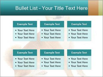 0000081726 PowerPoint Templates - Slide 56