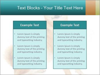 0000081726 PowerPoint Templates - Slide 57