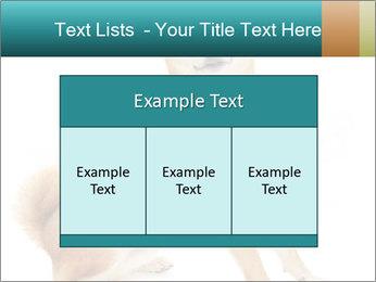0000081726 PowerPoint Templates - Slide 59