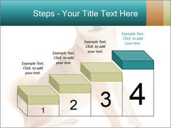 0000081726 PowerPoint Templates - Slide 64