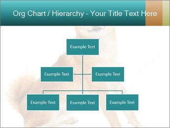 0000081726 PowerPoint Template - Slide 66