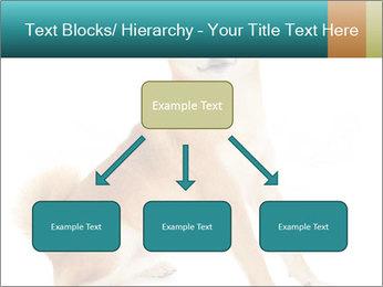 0000081726 PowerPoint Template - Slide 69