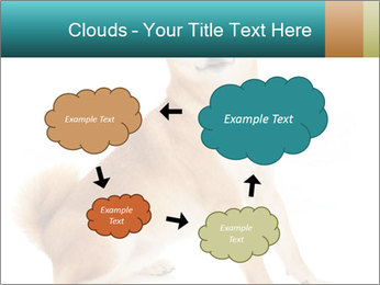 0000081726 PowerPoint Templates - Slide 72