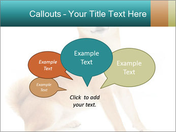 0000081726 PowerPoint Templates - Slide 73