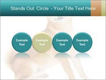 0000081726 PowerPoint Templates - Slide 76