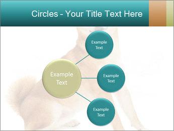 0000081726 PowerPoint Templates - Slide 79