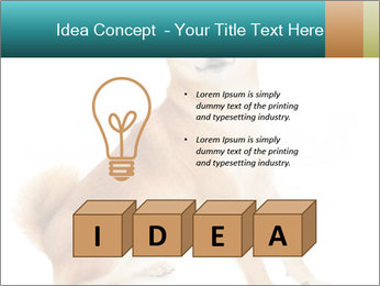 0000081726 PowerPoint Templates - Slide 80