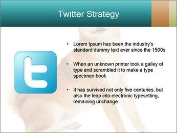 0000081726 PowerPoint Template - Slide 9