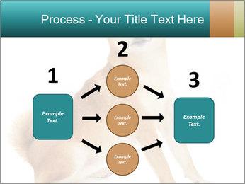 0000081726 PowerPoint Templates - Slide 92