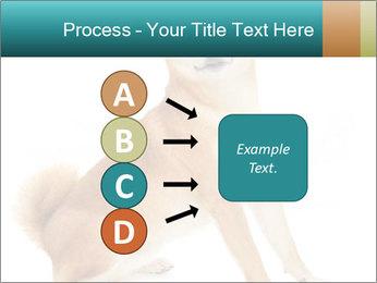 0000081726 PowerPoint Templates - Slide 94