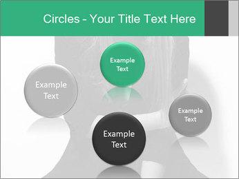 0000081729 PowerPoint Template - Slide 77