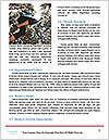 0000081731 Word Template - Page 4