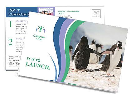 0000081733 Postcard Templates