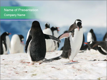0000081733 PowerPoint Template