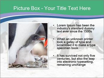 0000081733 PowerPoint Template - Slide 13