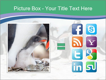 0000081733 PowerPoint Template - Slide 21