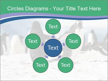 0000081733 PowerPoint Templates - Slide 78