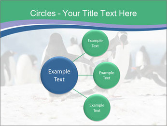 0000081733 PowerPoint Template - Slide 79