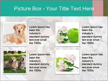 0000081735 PowerPoint Templates - Slide 14