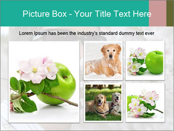 0000081735 PowerPoint Templates - Slide 19