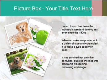 0000081735 PowerPoint Templates - Slide 23