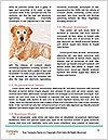 0000081735 Word Templates - Page 4