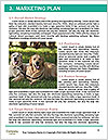 0000081735 Word Templates - Page 8