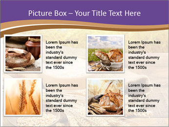 0000081736 PowerPoint Template - Slide 14