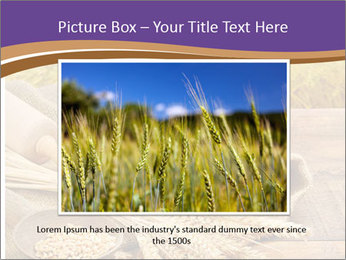 0000081736 PowerPoint Template - Slide 16
