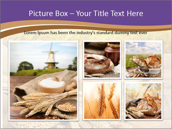 0000081736 PowerPoint Template - Slide 19