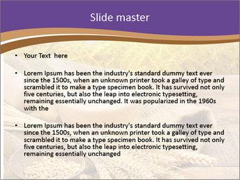 0000081736 PowerPoint Templates - Slide 2