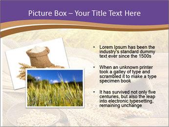 0000081736 PowerPoint Templates - Slide 20