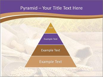 0000081736 PowerPoint Templates - Slide 30