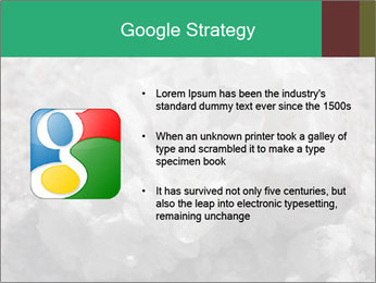 0000081737 PowerPoint Templates - Slide 10