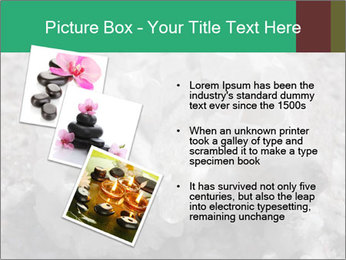 0000081737 PowerPoint Template - Slide 17