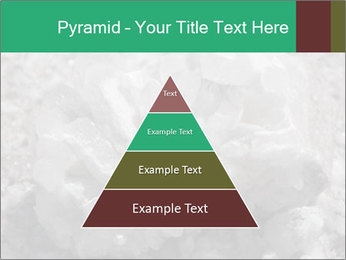0000081737 PowerPoint Templates - Slide 30