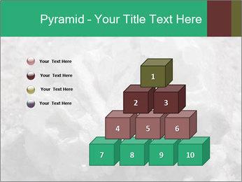 0000081737 PowerPoint Templates - Slide 31