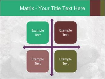 0000081737 PowerPoint Templates - Slide 37