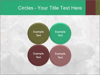 0000081737 PowerPoint Templates - Slide 38