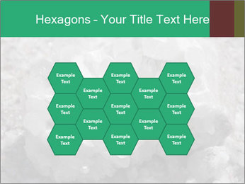 0000081737 PowerPoint Templates - Slide 44