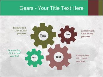 0000081737 PowerPoint Templates - Slide 47