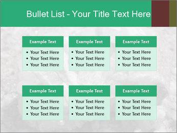 0000081737 PowerPoint Templates - Slide 56