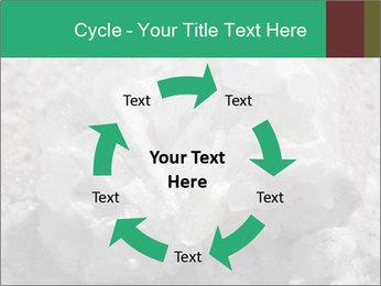 0000081737 PowerPoint Templates - Slide 62